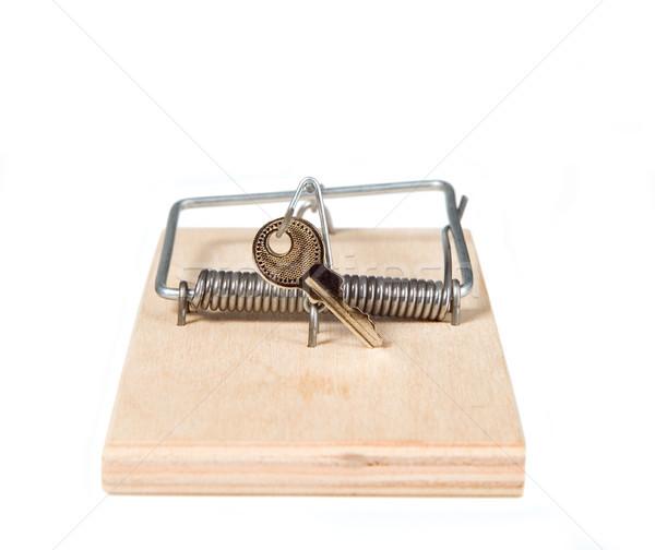 Mouse trappola tasti legno morte ratto Foto d'archivio © carenas1
