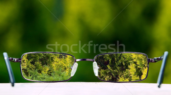 Eyeglasses on green nature background Сток-фото © carenas1