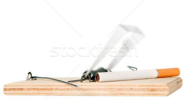 Ratón trampa cigarrillo madera muerte fumar Foto stock © carenas1