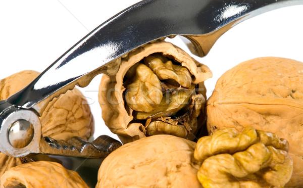Brown greek nut with nutcracker Stock photo © carenas1