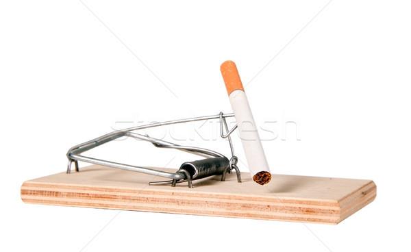 Mouse trappola sigaretta legno morte fumare Foto d'archivio © carenas1