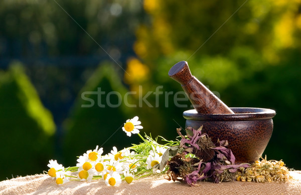 Wooden pestle with chamomiles Stock photo © carenas1