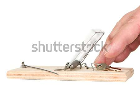 A mouse trap with money Stock photo © carenas1