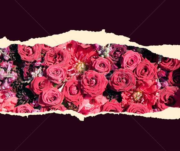 Sheet of paper with flowers Stock photo © carenas1