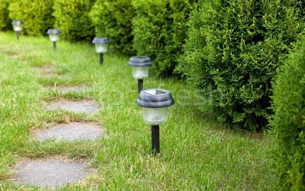 Yol taş bahçe çim doğa arka plan Stok fotoğraf © carenas1
