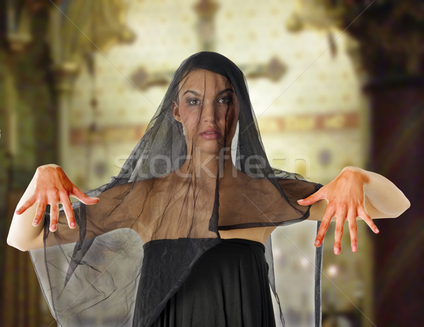 血まみれの 未亡人 黒 ベール 顔 ストックフォト © carlodapino