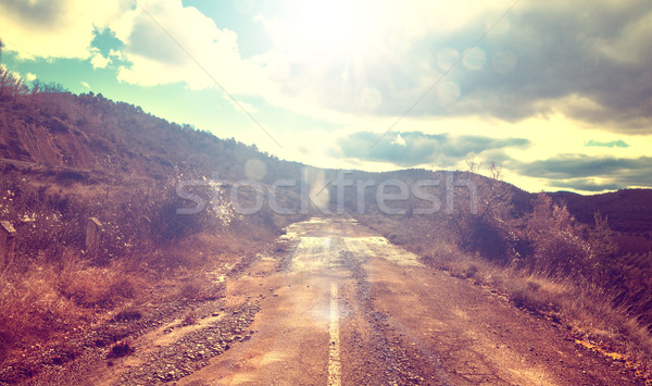 forest old country road, vintage style. Stock photo © carloscastilla