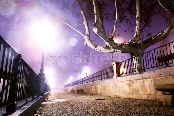 ночь Cityscape городской улице дерево здании свет Сток-фото © carloscastilla
