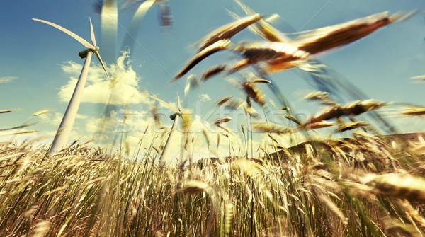 Wind energy concept Stock photo © carloscastilla