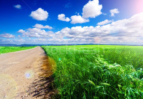природы закат декораций дороги зеленый небе Сток-фото © carloscastilla