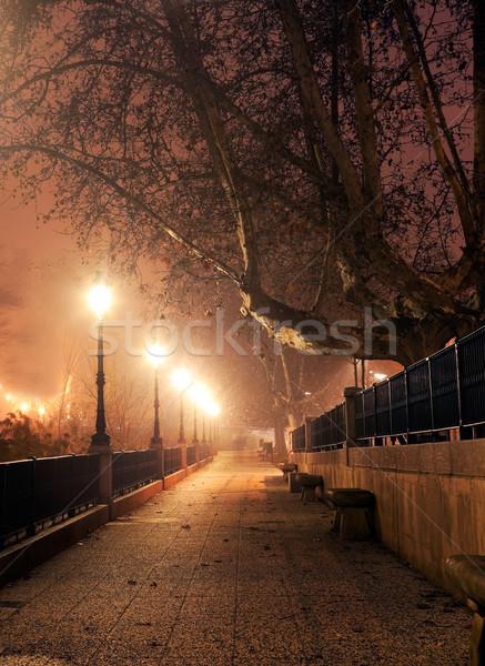 Noc Cityscape chodzić ulicy lampy Zdjęcia stock © carloscastilla