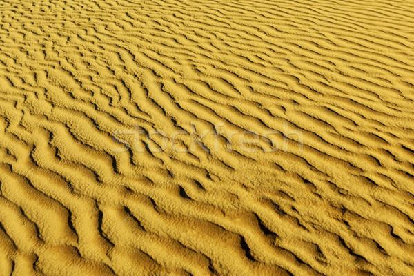 Stock photo: Sands of the desert.Sand dunes at sunset in the Sahara Desert