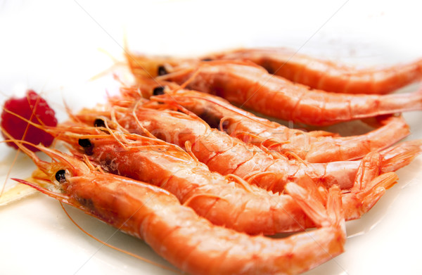 grilled prawns Stock photo © carloscastilla