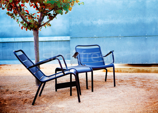 Kert székek részlet modern kicsi fa Stock fotó © carloscastilla