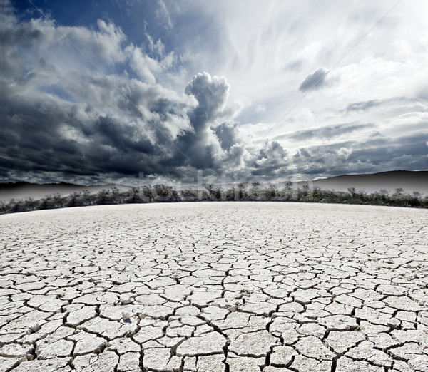 Bewolkt gebarsten grond boom aarde Stockfoto © carloscastilla