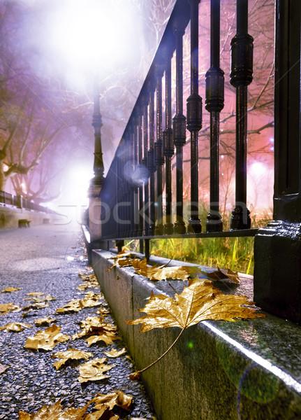 ночь Cityscape городской улице землю дерево здании Сток-фото © carloscastilla