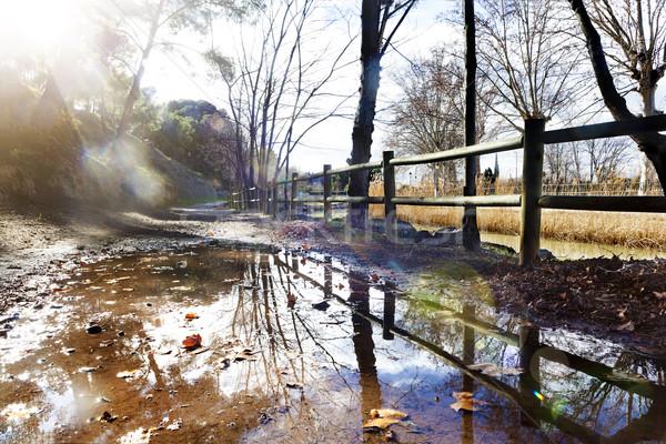 Park víz pocsolya város napsugár kint Stock fotó © carloscastilla
