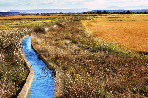 Irrigation water channel. Stock photo © carloscastilla