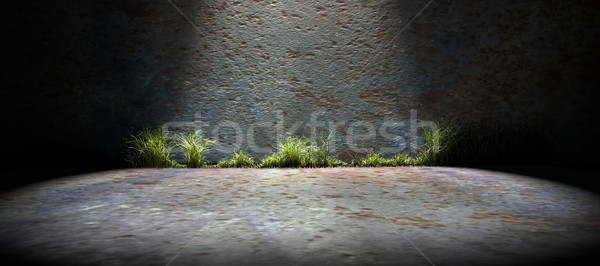 пусто улице конкретные стены 3d визуализации аннотация Сток-фото © carloscastilla