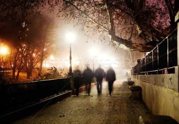 city at night Stock photo © carloscastilla