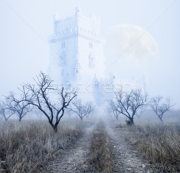 Mysterious foggy landscape Stock photo © carloscastilla