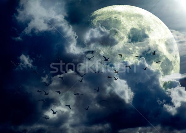 полнолуние пейзаж птиц Сток-фото © carloscastilla