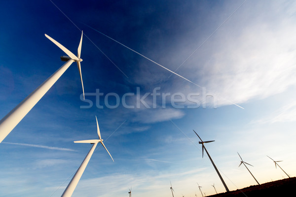 ecological energy concept Stock photo © carloscastilla