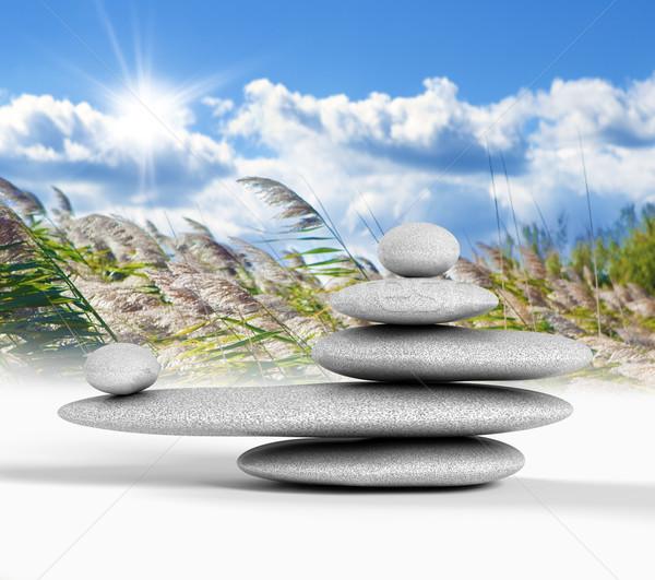 Zen equilibrado Foto stock © carloscastilla