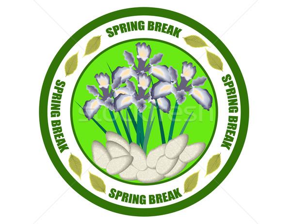 Tavaszi szünet család zöld bélyeg főiskola ünnep Stock fotó © carmen2011