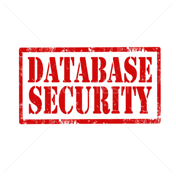 Database Security-stamp Stock photo © carmen2011