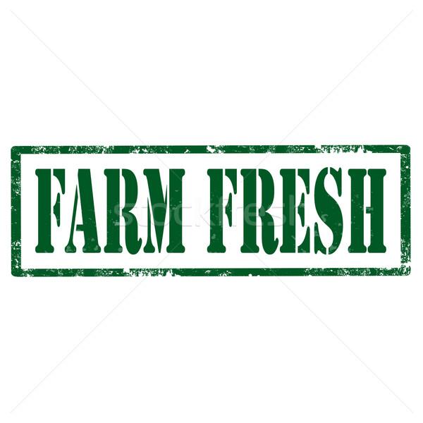 Fazenda grunge texto legumes fresco Foto stock © carmen2011