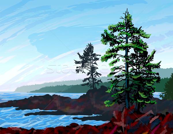 West Coast Landscape Painting Stock photo © CarpathianPrince