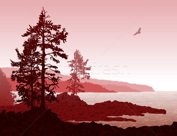 Vancouver Island BC West Coast Landscape Stock photo © CarpathianPrince