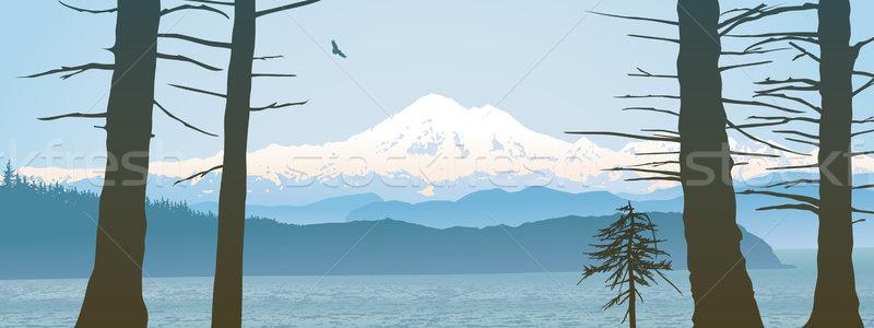Padeiro Washington panorâmico olhando em linha reta Vancouver Foto stock © CarpathianPrince