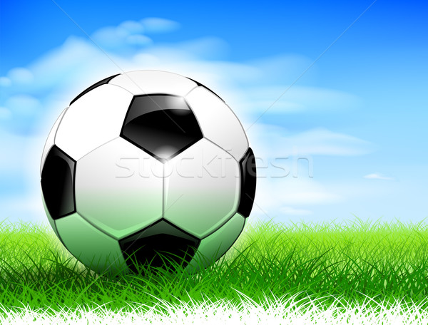 Soccer ball on the pitch Stock photo © CarpathianPrince
