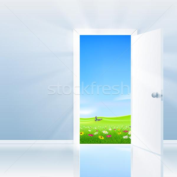 Nyitott ajtó természet ajtó buja mező kék ég Stock fotó © CarpathianPrince
