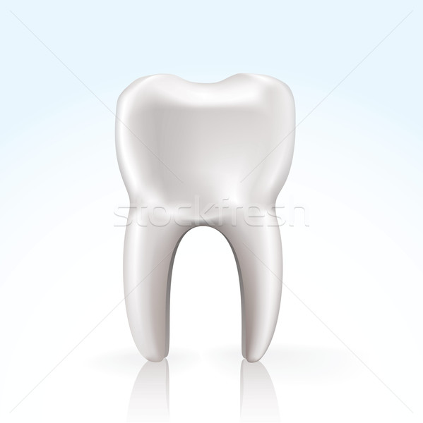 Stock photo: vector tooth