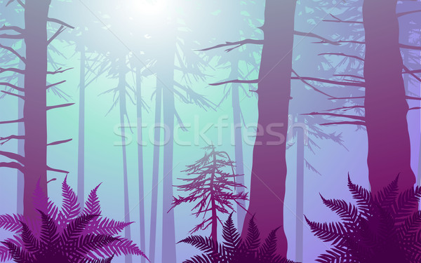 vector enchanted forest in cool colors Stock photo © CarpathianPrince