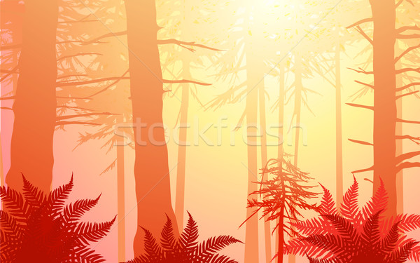 vector enchanted forest in warm colors Stock photo © CarpathianPrince