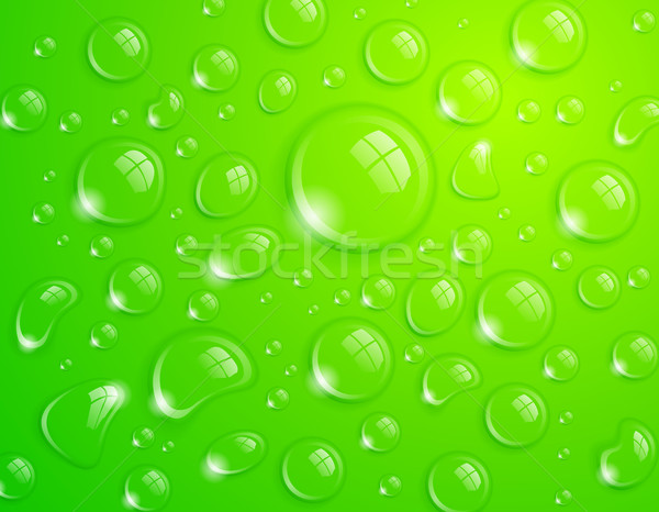Foto d'archivio: Verde · gocce · d'acqua · acqua · pulita · drop · superficie · abstract