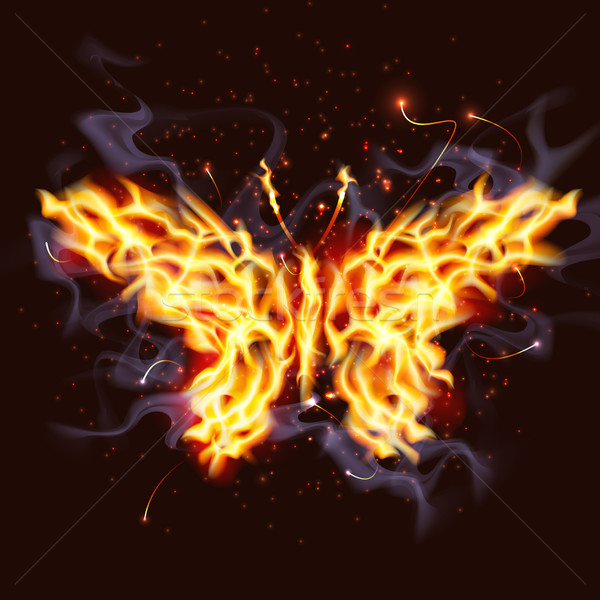 Feu papillon illustration feu orange fumée Photo stock © CarpathianPrince