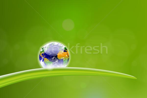 新鮮な 地球 露 ドロップ 美しい 実例 ストックフォト © CarpathianPrince