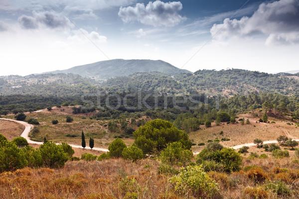 Vadi güzel manzara dağ yaz yol Stok fotoğraf © Carpeira10