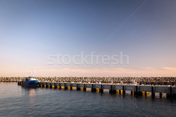 Liman Bina doğa manzara okyanus Stok fotoğraf © Carpeira10