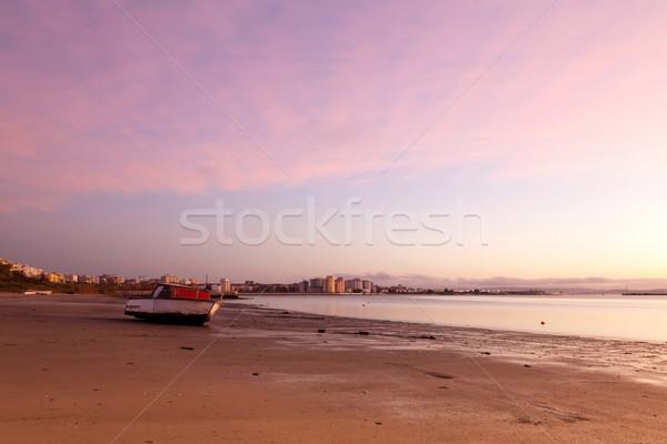 Ufuk çizgisi nehir şehir gökyüzü Bina manzara Stok fotoğraf © Carpeira10