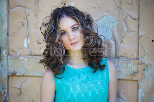 красивой портрет Vintage весны стороны Сток-фото © castenoid