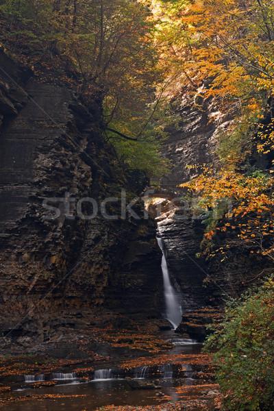 Piękna wodospad kaskada spadek drzewo Zdjęcia stock © Catuncia