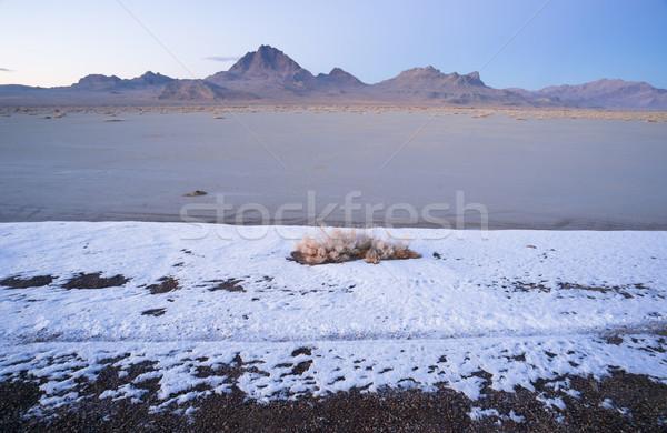 Fresh Snow Bonneville Salt Flats Utah Silver Island Mountains Stock photo © cboswell
