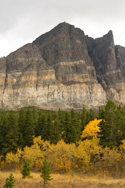 осень цвета многие ледник сторона парка Сток-фото © cboswell
