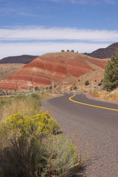 Peint collines fossile Oregon USA nord Photo stock © cboswell